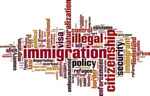 immigration-consultant